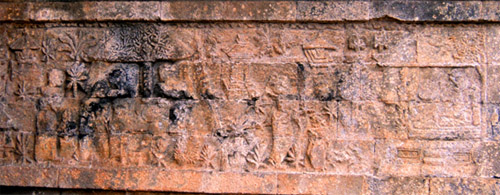 Panel-05