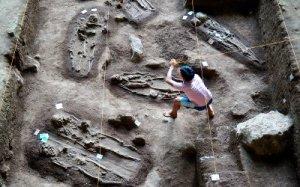 Pelabelan Individu Homo Sapiens Goa Harimau