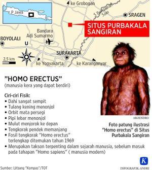 Homo-01